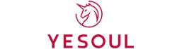 YESOUL Product | สินค้ายี่ห้อ YESOUL