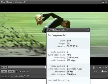 FLV Player (โปรแกรมดูวีดีโอ เปิดไฟล์ FLV จากเว็บไซต์ต่างๆ) :