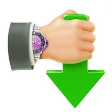 Internet Download Accelerator (โปรแกรมดาวน์โหลดเร็ว) :
