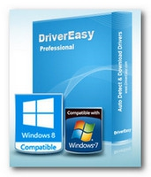 DriverEasy (โปรแกรม DriverEasy ค้นหาไดร์เวอร์) :