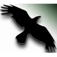 Data Crow (โปรแกรม Data Crow จัดการไฟล์สื่อบันเทิง ฟรี)