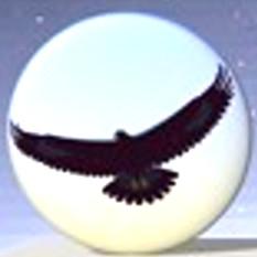 Eagle Mode (โปรแกรม Eagle Mode จัดการไฟล์ เปิดไฟล์ เล่นเกมส์หมากรุก อินเตอร์เฟสสุดล้ำ) :